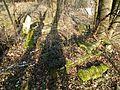 MOs810 WG 2017 2 (Notec Polder) (Herburtowo, old evang. cemetery) (4).jpg