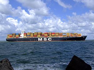 MSC Pamela p16 approaching Port of Rotterdam, Holland 29-Jul-2007.jpg