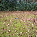 M F Husain Grave Brookwood.jpg