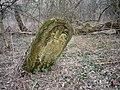 Macewa - żydowska stela nagrobna - jest ich tu ok. 6 tys. - panoramio.jpg