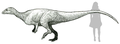 Macrogryphosaurus life reconstruction.png