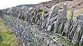 Magnificent slate dyke - geograph.org.uk - 676632.jpg