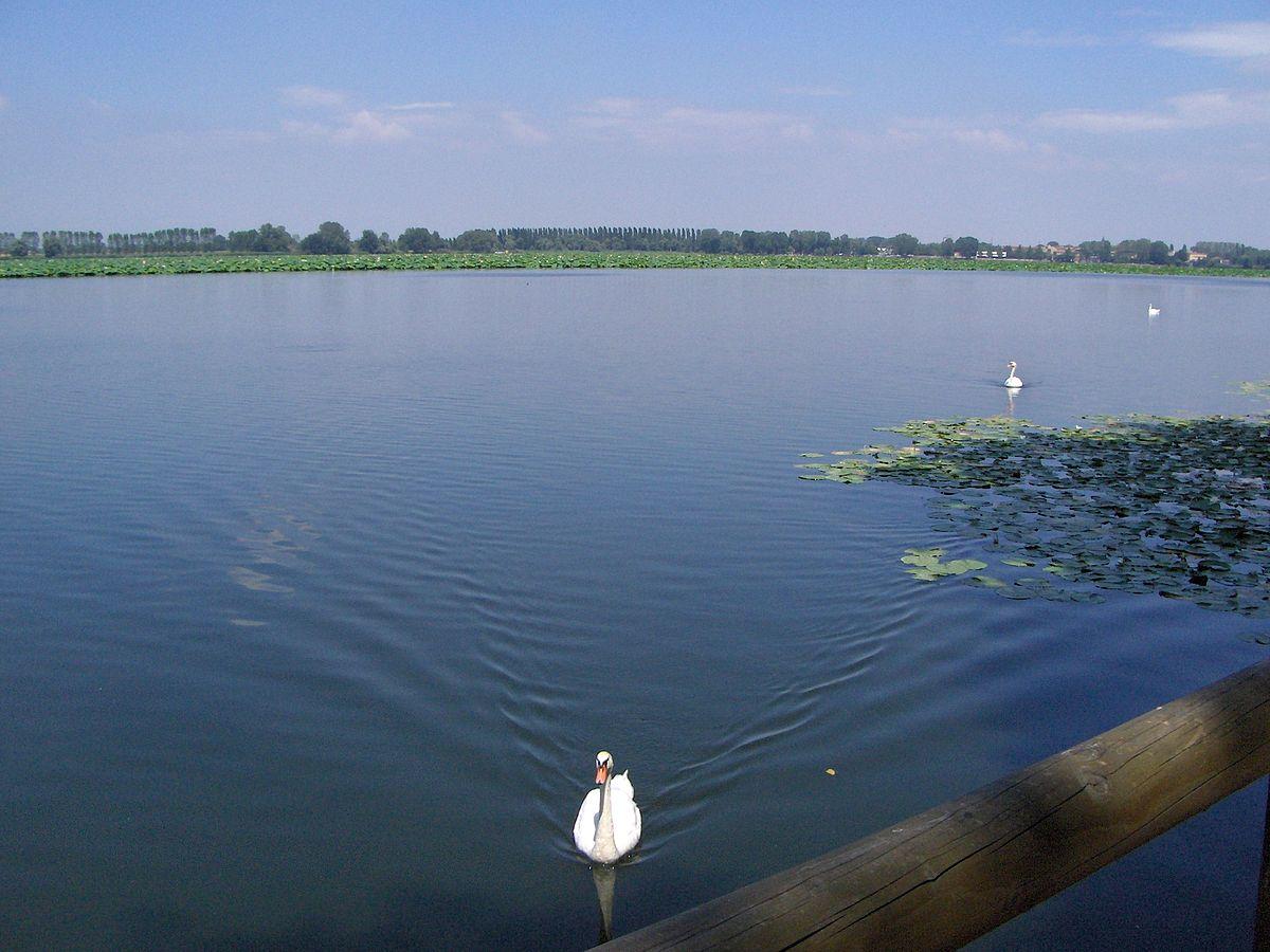 Laghi di mantova wikivoyage guida turistica di viaggio for Disegni di laghi
