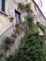 Marciana Alta 3 - Blumentreppe in der Via Appiani.jpg