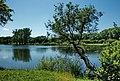 Max-Aschmann Park - panoramio (4).jpg