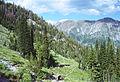 Maxwell lake trail.jpg