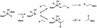 Borylation - Mechanistic pathways for aliphatic C–H borylation