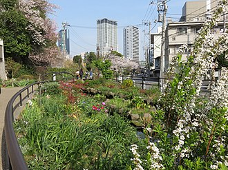 Meguro River - Image: Meguro River, Setagaya(2)