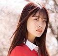 Mei Sakai and Cherry Blossoms.jpg