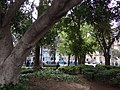 Mercat, Palma, Illes Balears, Spain - panoramio (3).jpg