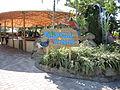 MiamiSeaquarium-TropicalWings.JPG