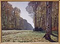 Monet Le Pave de Chailly Musee dOrsay.JPG