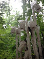 Monotropa uniflora - Ghost Plant.jpg
