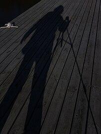 Moonlight shadow.jpg
