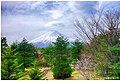 Mt Fuji (30578747).jpeg