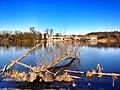 Mud Lake (6534290621).jpg