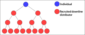 Binary plan - A typical MLM binary tree structure. The blue individual will receive compensation from the sales of the downline red members.