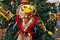 Mummers Parade on New Year's day, Philadelphia, Pennsylvania LOC 11586319425.jpg