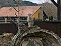 Mungos mungo (Parque de la Naturaleza de Cabárceno).jpg