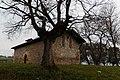 Muxika - San Roman baseliza 2.jpg