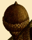 NAS-015f Quercus imbricaria acorn.png