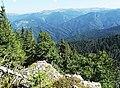 NP Veľká Fatra, výhľad z Veľkej Hubnej (2).jpg