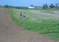 NRCSIL00040 - Illinois (4163)(NRCS Photo Gallery).tif