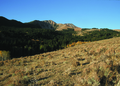 NRCSMT01019 - Montana (4889)(NRCS Photo Gallery).tif