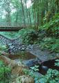 NRCSOR00043 - Oregon (5781)(NRCS Photo Gallery).tif