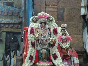 Kayarohanaswami Temple, Nagapattinam - Festive image of the temple