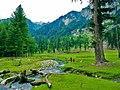 Natural scenery in Kumrat Valley, Pakistan.jpg