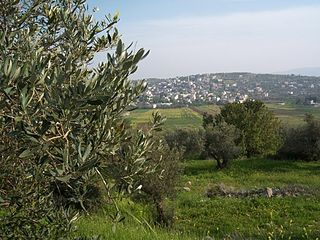 Misilyah Municipality type D in Jenin, State of Palestine
