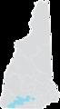 New Hampshire Senate District 9 (2010).png