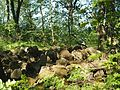 Niedersachsen, Goslar, LSG GS 00001, Ruinen auf dem Petersberg einschließlich Klusfelsen, Trümmer, Nordseite.JPG