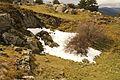 Nieve en el Alto del León (8636828463).jpg