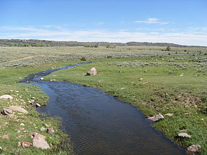 North Laramie River - North Laramie River close to Friend Park in the Medicine Bow National Forest