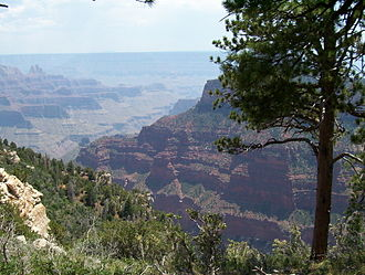 Arizona - The North Rim of the Grand Canyon.