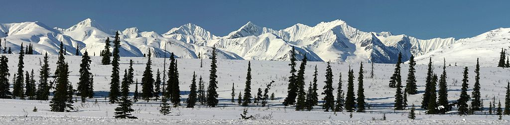 North of Denali National Park
