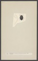 Nosodendron - Print - Iconographia Zoologica - Special Collections University of Amsterdam - UBAINV0274 001 03 0052.tif