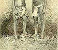 Nouvelle géographie universelle - la terre et les hommes (1876) (14777690335).jpg