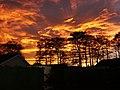 November Sunset - geograph.org.uk - 477125.jpg
