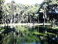 O verde e as águas.jpg