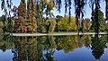 Octombrie Parcul IOR 2.jpg