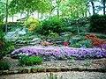 Oklahoma Gardens @ Home 009.jpg