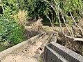 Old water pipework on bank of Barron River in Kuranda, Queensland, July 2020.jpg