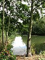 One of the fishing lakes at Cobbleacre - geograph.org.uk - 552698.jpg
