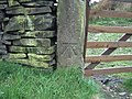 Ordnance Survey Bench Mark - geograph.org.uk - 169595.jpg