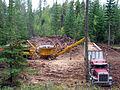 Oregon BLM Forestry 11 (6871713473).jpg