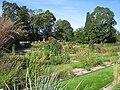 Oslo Botanical Garden - IMG 9049.jpg
