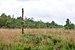 """Osterholz-Scharmbeck, Naturschutzgebiet """"Torfkanal und Randmoore"""" -- 2018 -- 2987.jpg"""